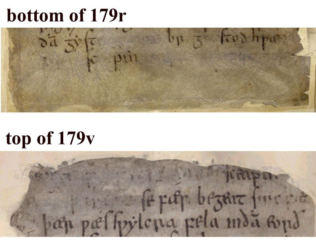 Beowulf on steorarume online annotations of the edited for Cigar dossier template
